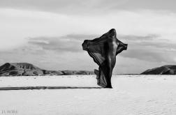 by Massimo Vecchi